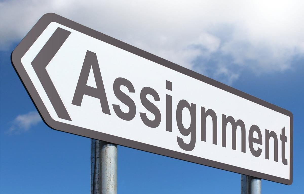 Write my essay, assignment help, essay writing services for everyone