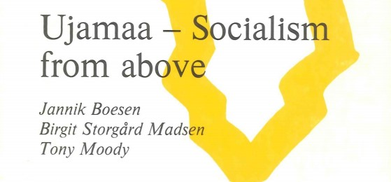 Ujamaa socialism from above